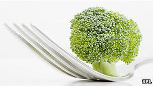 O brócolis encontrado nos supermercados tem o composto glucoraphanin, mas em menor quantidade.