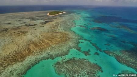 Recifes de corais são fortemente afetados pelo aquecimento global.