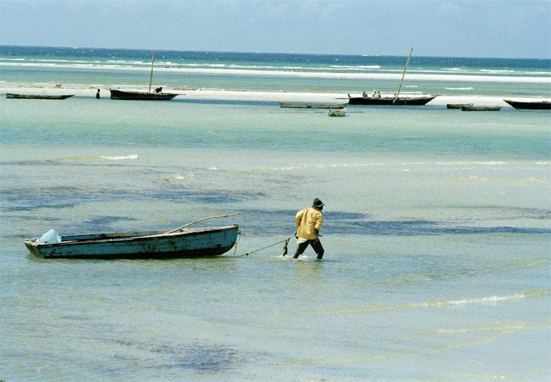 Pescador na Tanzânia. Foto:ONU/M. Grant.