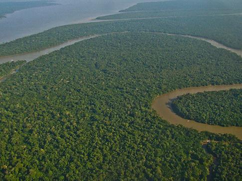 A Amazônia guarda cerca de um quinto de todas as reservas de água doce do mundo. Foto: LuBasi/Creatie Commons.
