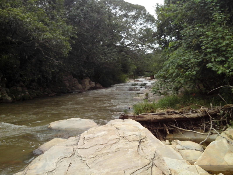 Corredeira em Pirenópolis, no interior de Goiás. Foto de Henrique Cortez.