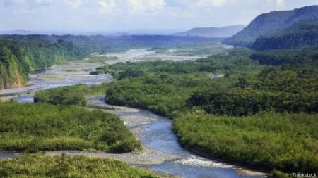 Floresta Amazônia abriga um dos ecossistemas mais ricos do mundo.