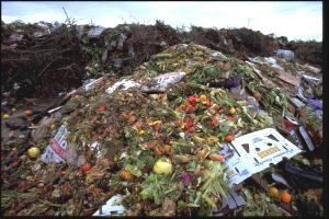 Desperdício de alimentos. Foto de arquivo.