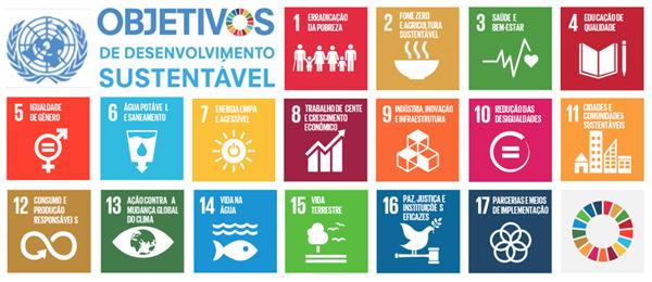 Estes objetivos fazem parte da Agenda 2030 para o desenvolvimento sustentável, estruturado pela ONU, onde desenvolvimento sustentável é definido como o desenvolvimento que procura satisfazer às necessidades da geração atual, sem comprometer a capacidade das futuras gerações de satisfazerem as suas próprias necessidades.