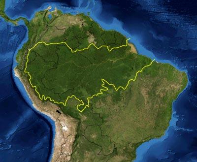 Amazônia – Foto: Wikimedia Commons.