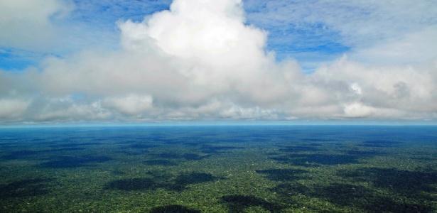 Árvores liberam gases que são levados por correntes para a alta atmosfera.